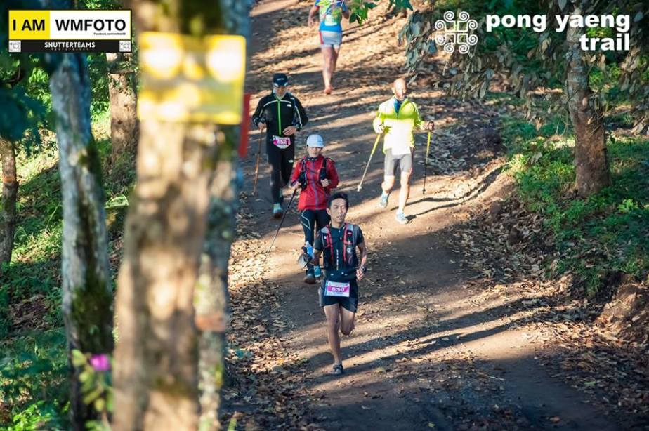 PYT2015 : My first true ultratrail and a lesson onhydration